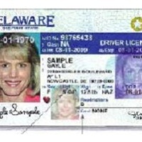 Are You Seeing Stars on Your State Driver's License? Say Hello to REAL ID