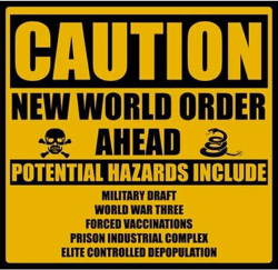 Caution - What is the New World Order? | Patriots &  Paulies Politics and News